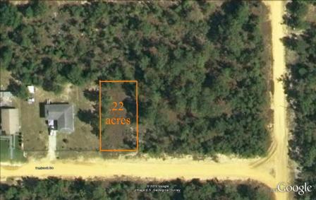 Homes For Sale Interlachen Florida Alan Gray Realty